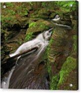 Tompkins Falls Catskills N.y.-7 Acrylic Print