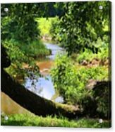 Toms Creek In Summer 1 Acrylic Print