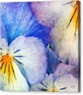 Tones Of Blue Acrylic Print