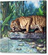 Tony Acrylic Print