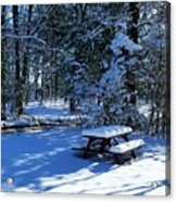 Too Cold To Picnic Acrylic Print