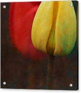 Too Tulips Acrylic Print