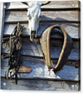 Tool Shed Acrylic Print