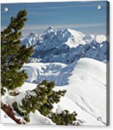 Top Of The Top - Lombardy / Italy Acrylic Print