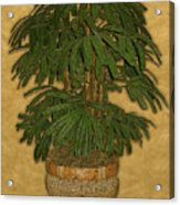 Topiary 4 Acrylic Print