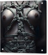 Topless Rope Harness Close Up - Fine Art Of Bondage Acrylic Print