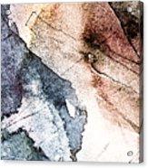 Topographical 2 Acrylic Print