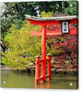 Torii And Cherry Blossoms Acrylic Print