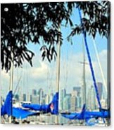 Toronto Through A Forest Of Masts Acrylic Print