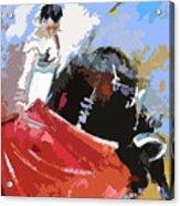 Toroscape 36 Acrylic Print