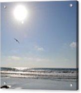 Torrey Pines Beach Acrylic Print