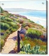 Torrey Pines Guy Fleming Trail Acrylic Print