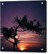 Torrey Pines Twinkle Twinkle Acrylic Print