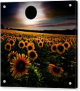 Total Eclipse Over The Sunflower Field Acrylic Print