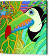 Toucan And Red Eyed Tree Frog Acrylic Print
