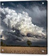 Touch The Sky Acrylic Print