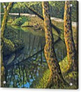 Tow Path Acrylic Print by Don Perino