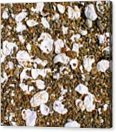 Towano Pebbles Acrylic Print