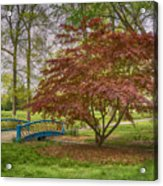 Tower Grove Arched Bridge And Maple Tree Dsc01828 Acrylic Print