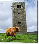 Tower Of Joy Acrylic Print