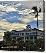 Towering Palm Acrylic Print
