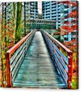Towson University Walkway Acrylic Print