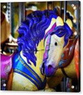 Toy Pegasus Acrylic Print
