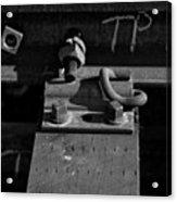 tp II Acrylic Print
