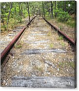 Tracks To Nowhere Acrylic Print