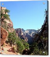 Trail - Zion Park Acrylic Print