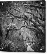 Trail At Cumberland Island Acrylic Print