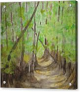 Trail In Woods Acrylic Print