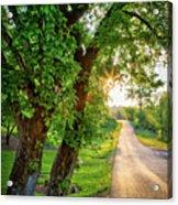 Trail Into Sunset Acrylic Print
