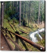 Trail Over Sol Duc Falls Bridge In Olympic National Park Acrylic Print