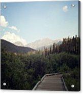 Trail Ridge Road Acrylic Print