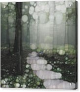 Trail Series 5 Acrylic Print