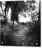 Trail Acrylic Print
