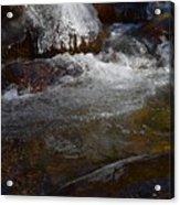 Trail To Tokopah Falls Acrylic Print