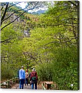 Trail To Waterfall In Vicente Perez Rosales National Park Near Puerto Montt-chile Acrylic Print