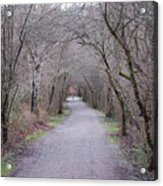Trail Tunnel Acrylic Print