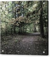 Trail Walking  Acrylic Print