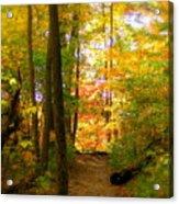 Trailhead Light Acrylic Print by Ed Smith