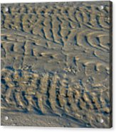 Trails In The Sand Acrylic Print