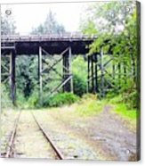 Trains Over And Under Acrylic Print