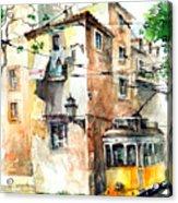 Tram In Lisboa Acrylic Print