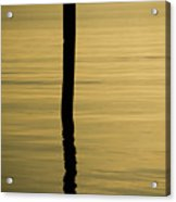 Tranquil Reflections Acrylic Print by Tom Rickborn