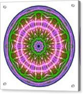 Transition Fcircle Acrylic Print