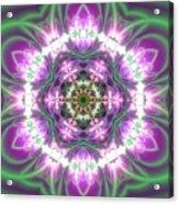 Transition Flower 6 Beats 3 Acrylic Print