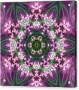 Transition Flower 6 Beats 4 Acrylic Print