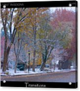 Transitions Autumn To Winter Snow Poster Acrylic Print